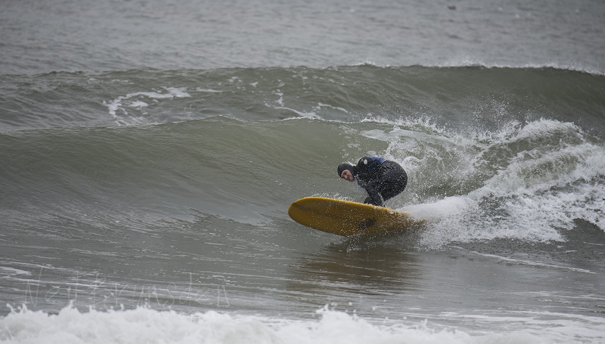 Scarborough Surfin'
